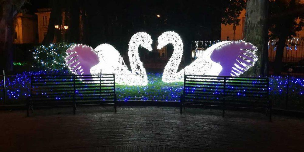 Christmas lights in Polignano